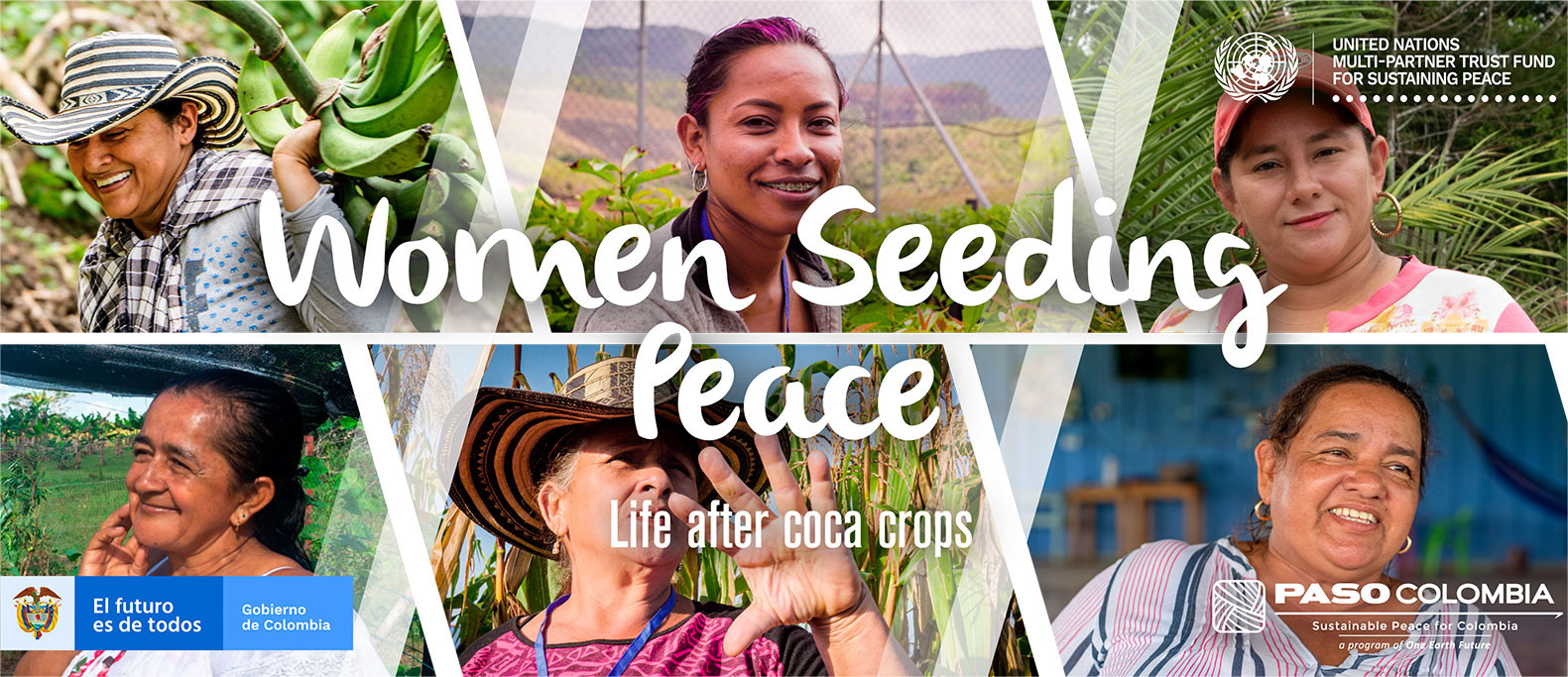 Women seeding peace