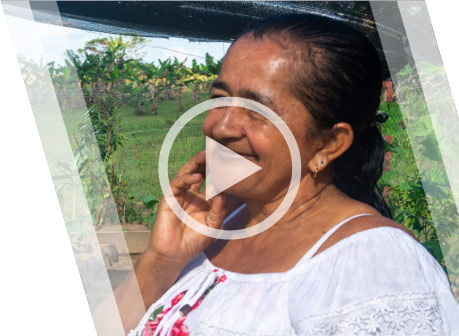 Substitution of illicit crops in Colombia - Socorro