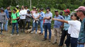 Substitution of illicit crops in Colombia