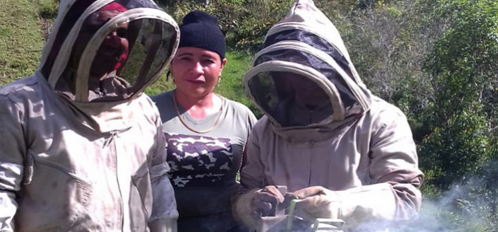 Beekeeper in Colombia