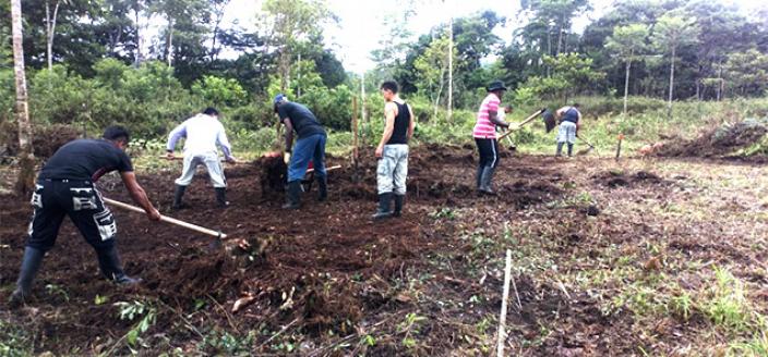 Colombian School for Farming