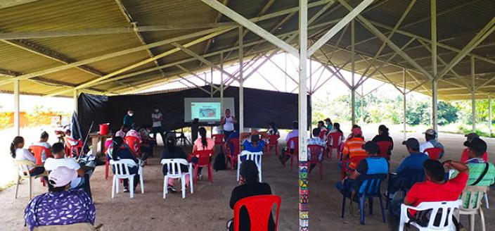 New Jobs Ex Combatants Colombia Farming School