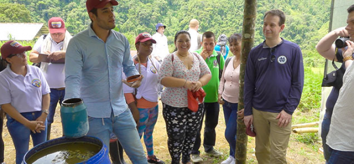 Peace Building In Colombia - Education