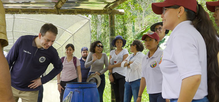 Peace Building In Colombia - Farming