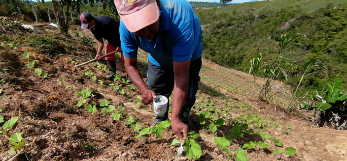 Rural agriculture in Colombia
