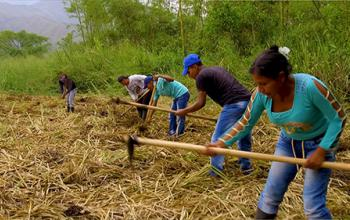Rural Projects Colombia