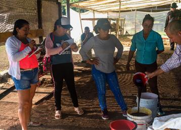 derails - illicit crops colombia