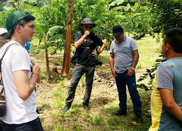 reintegrating farc in colombia
